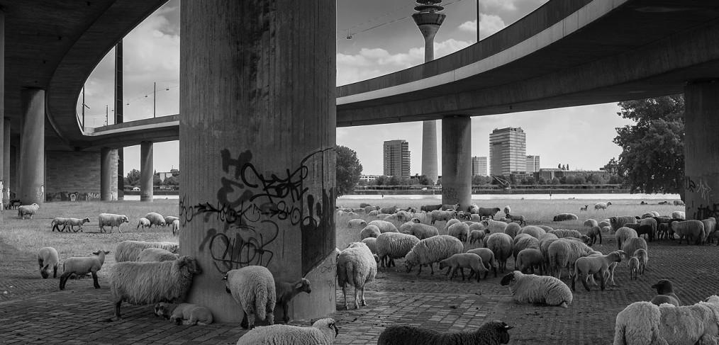 Düsseldorf