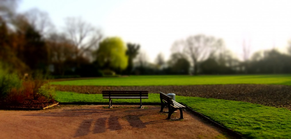 Benches and a green field