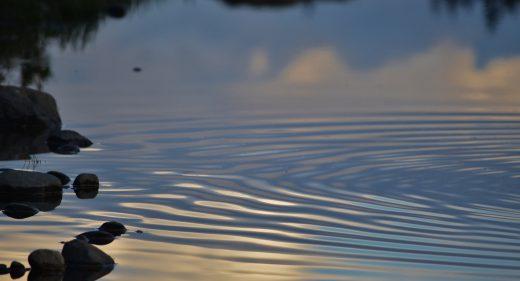 ~ the ripple effect ~