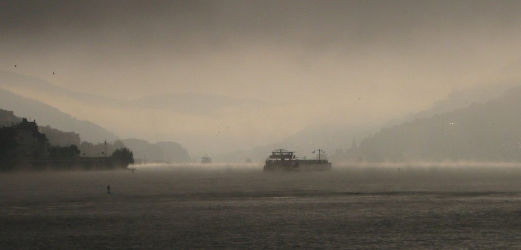 Morning mist on the Rhine