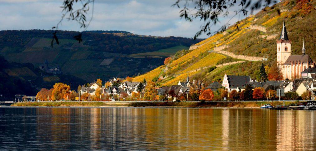 Rhein bei Lorch
