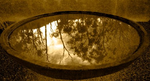 Bush Fire Reflection, Victoria